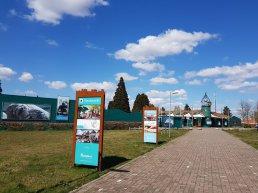 Dolfinarium wil moderne, educatieve dierentuin zijn