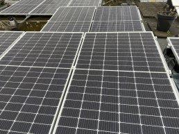 SGP: 'Geen zonneparken op landbouwgrond'